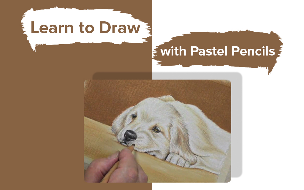 Learn to Draw a Laying Dog with Pastel Pencils