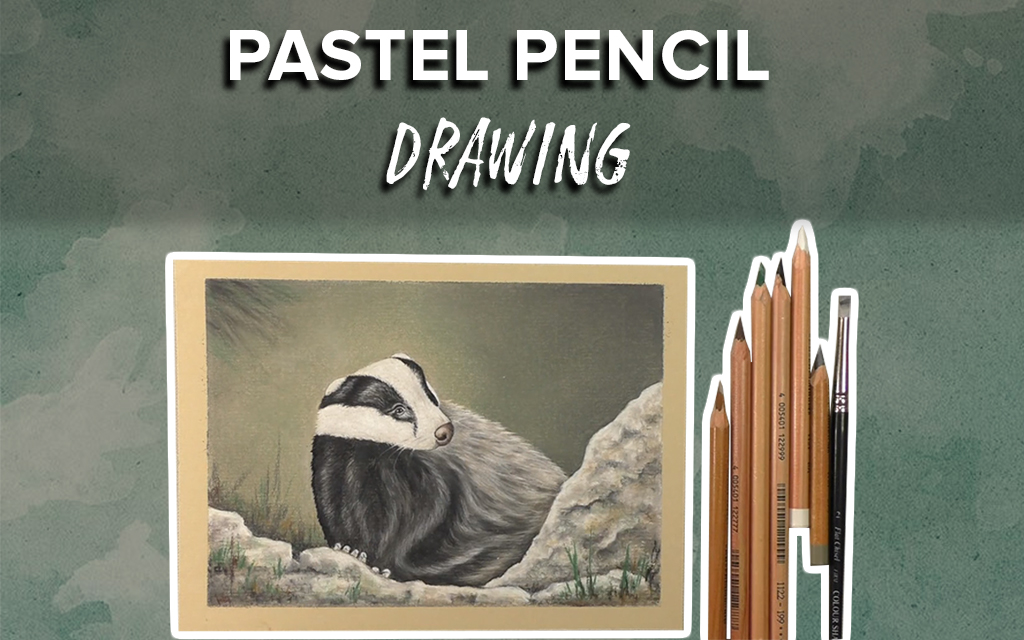 Pastel Pencil Drawing: Learn to Draw a Badger