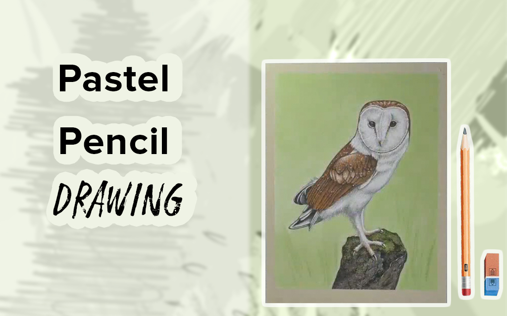 Pastel Pencil Drawing: Learn to Draw a Barn Owl