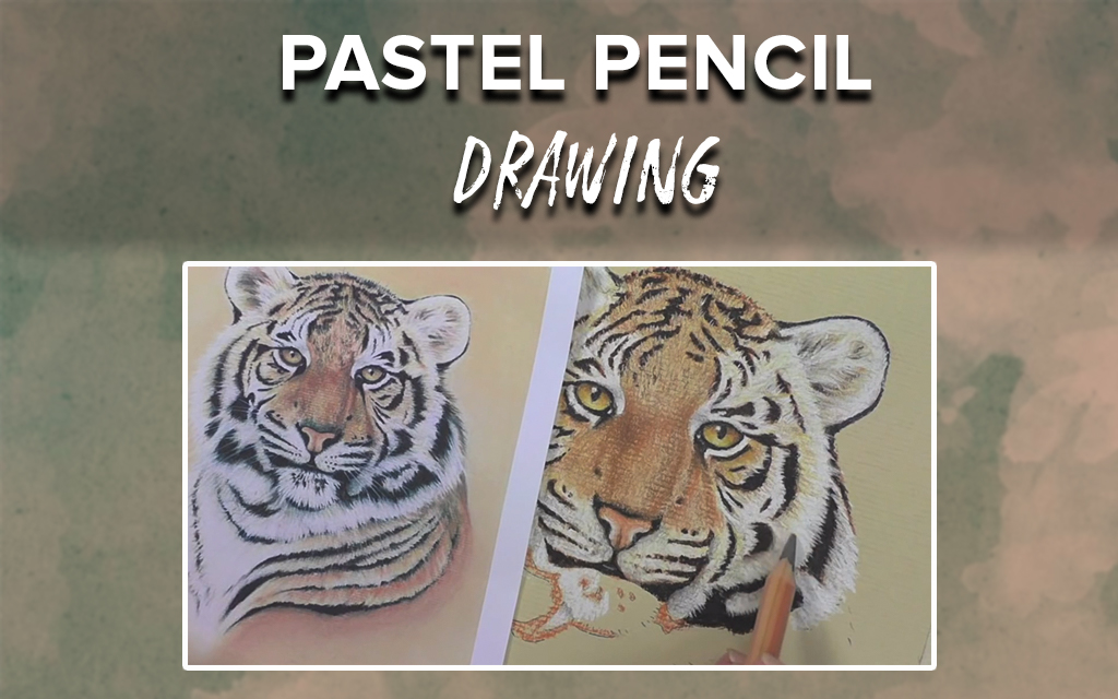 Pastel Pencil Drawing: Learn to Draw a Tiger